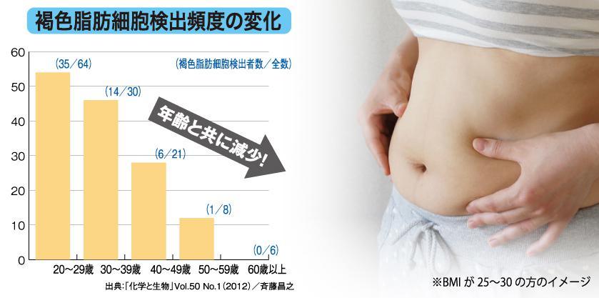 シボヘール 褐色脂肪細胞は年齢とともに減少
